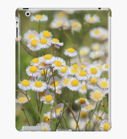 Daisy Field iPad Case/Skin