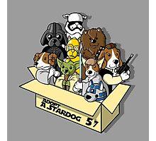 Adopt a Stardog Photographic Print