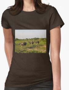 ostrich in the african savanna Womens Fitted T-Shirt