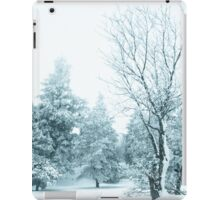 Snow and frost covered pine trees iPad Case/Skin