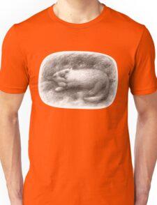 White Cat Sleeping on a Sofa Unisex T-Shirt