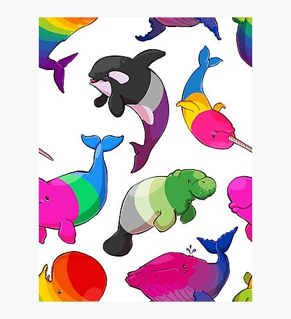 Sexuality Whales (And Aromanatee) Pattern Photographic Print