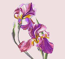 Irises-1 by KKartist