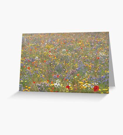 Fabulous Field of Flowers Greeting Card
