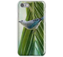Tanager in Costa Rica iPhone Case/Skin
