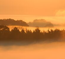 Misty Sunrise by optimistic-view