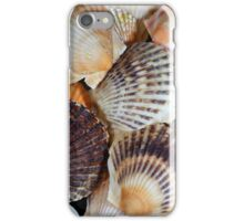 Shells of the Scallop  species  Zyclochlamys patagonica. iPhone Case/Skin