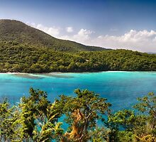 Hawknest Bay Panorama, St John, US Virgin Islands by George Oze