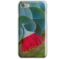 Australian Native iPhone Case/Skin