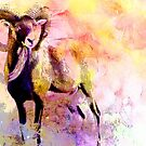 URIAL by Tammera