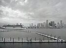 Cruise Miami by Bill Wetmore