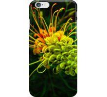 Australian iPhone Case/Skin