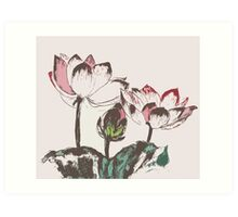 Three Lotus Art Print
