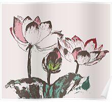 Three Lotus Poster