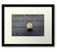 9-11 Memorial Panel Framed Print