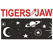 Tigers Jaw Photographic Print