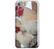 Roosting Hen iPhone Case/Skin
