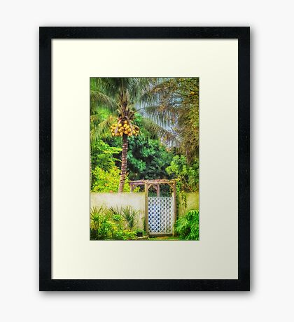 Coconut palm tropical gateway Framed Print