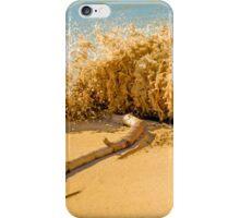 Beach Slam Dunk iPhone Case/Skin