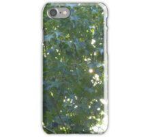 Maple tree iPhone Case/Skin