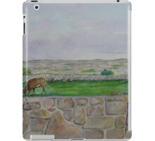 Country view near Galway iPad Case/Skin