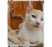 Rescue Cat iPad Case/Skin