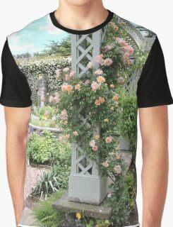 Peach & Green Trellis Graphic T-Shirt