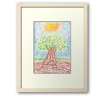 1006 - Apple Tree with Fruits under Sun Framed Print