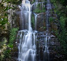 Minamurra Falls by candysfamily