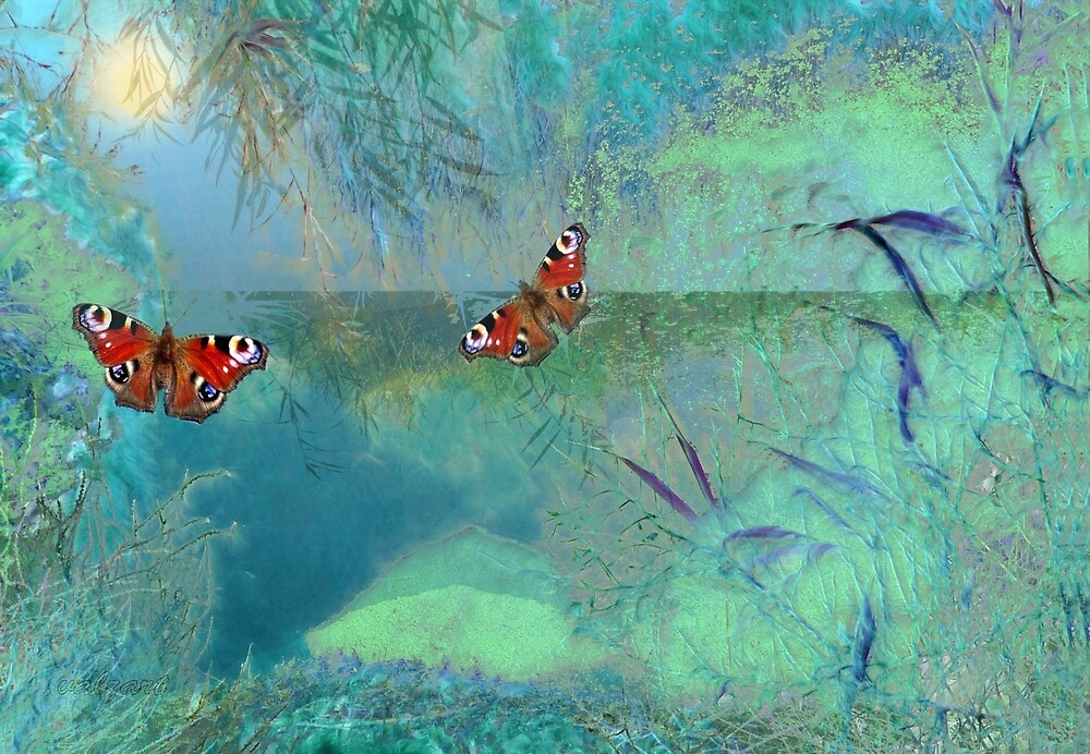 The Pond'... by Valerie Anne Kelly