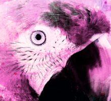 Crazy Parrot Sticker