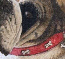 Trixie the beautiful British Bulldog Sticker