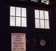 Doctor Who TARDIS Doors - Police Box by stevefreestone