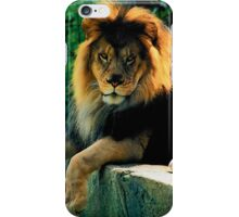 We won't run and hide..Carry on...my song's forever... iPhone Case/Skin