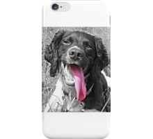 Handsome Springer iPhone Case/Skin