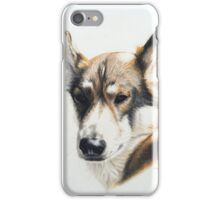 Olly - the beautiful Husky cross iPhone Case/Skin