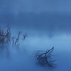 After the Rain the Ground Fog came..........Frozen Lake........Berlin by Imi Koetz