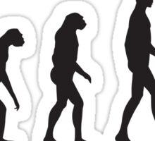 Evolution Darts Sticker
