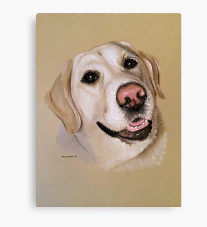 Riley the smiley golden Labrador Canvas Print