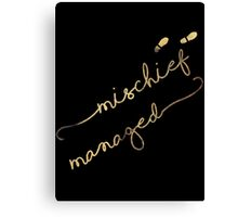 Mischief Managed (black) Canvas Print