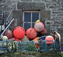 Le chat du pêcheur by Jean-Luc Rollier