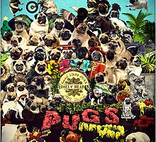 SGT PUGS LONELY HEARTS PUG BAND by darklordpug
