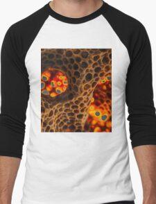 Honeycomb Men's Baseball ¾ T-Shirt