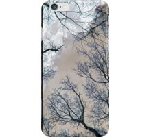 Branches Against Winter Sky iPhone Case/Skin