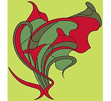 Butterfly swirl, modern art nouveau green red Photographic Print