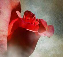 One Single Rose Sticker