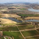 flying over vineyards near Hobart by gaylene