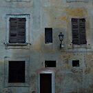 A Wall in Mantua, Italy by Igor Pozdnyakov