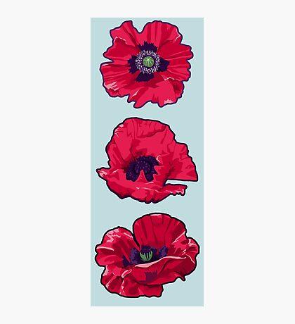 Poppies - August Birth Flower Photographic Print