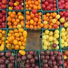 Tomatoes by Christine Wilson